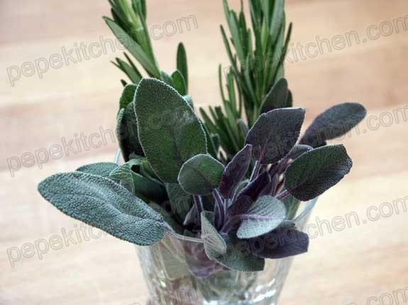 salvia hierba aromatica