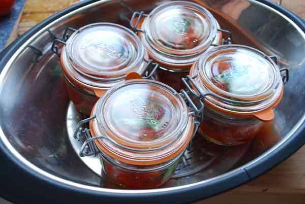 Terrina de tomates, cocción al vapor © José Maldonado