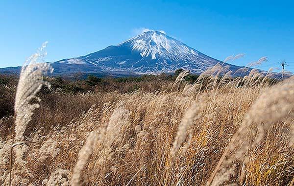 monte japon