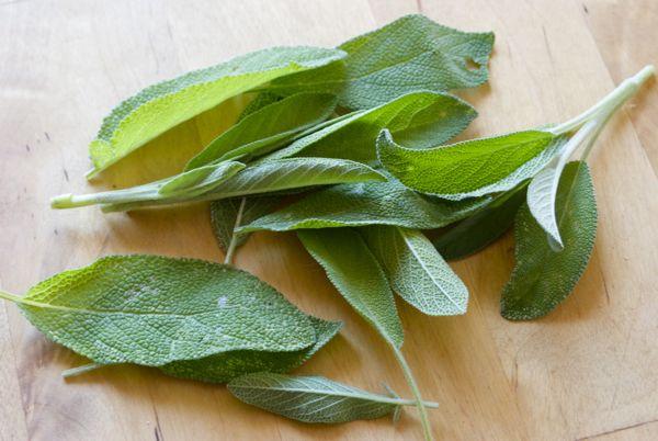 la salvia usos medicinales y culinarios pepekitchen